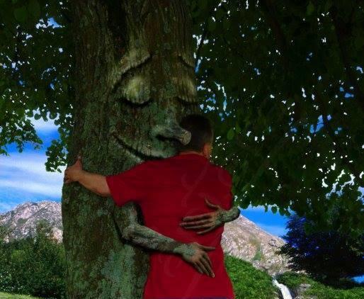 Tajemnice Drzew. Duchowe darylasu.